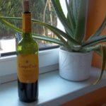 Die Auswahl des richtigen Weins