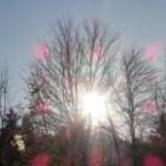Impressionen aus Thalheim Erzgebirge heute am 14.11.2013