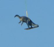 Noch ein fliegender Dino