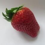 Spanische Erdbeeren als Blick der Woche