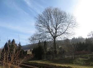 Wetter in Thalheim Erzgebirge