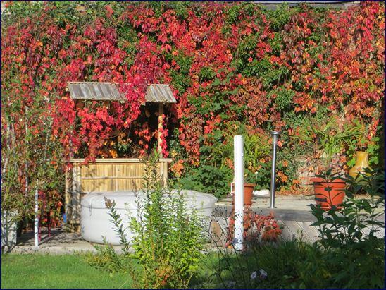 Unser Garten am 3. Oktober. Sehr herbstlich