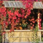 Meine Gartenbar Bamubus Bar