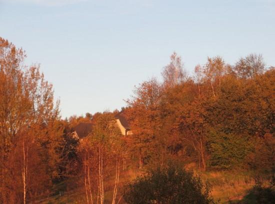 Alles herbstlich rot in Thalheim