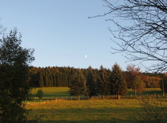 indian-summer-thalheim-erzgebirge1