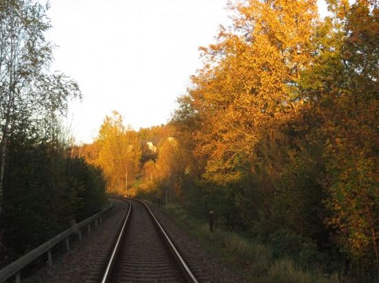 Bahnstrecke in Thalheim Erzgebirge im Herbst
