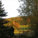 Indian Summer in Thalheim Erzgebirge