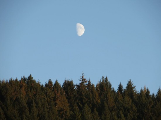 Ein Mond am Tag