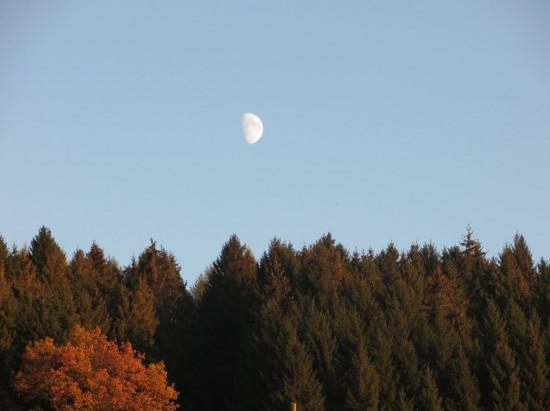novemberanfang-thalheim-erzgebirge-mond-am-tag