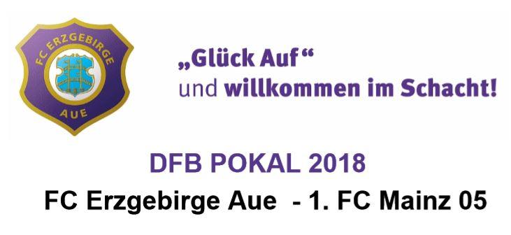FC Erzgebirge Aue gegen 1. FC Mainz 05